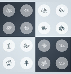 Harmony icons line style set with chickpeas rowan vector