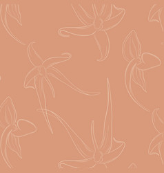 orchid flowers on beige background decoration vector image
