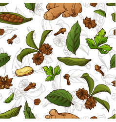 Seamless pattern with aromatic plants sketch hand vector
