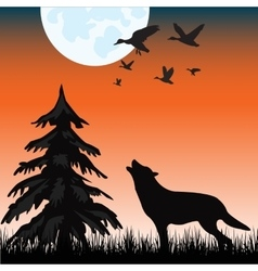 Wolf in wood vector image vector image