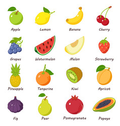 fruit food icons set isometric style vector image