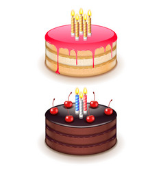 birthday cake with candles isolated on white vector image