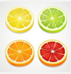 citrus slices realistic lemon orange lime vector image vector image