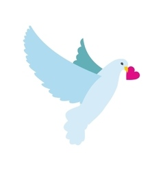 Dove with heart flat icon vector image