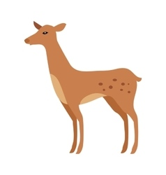 Fawn Isolated Junior Verdant Young Spotted Deer vector
