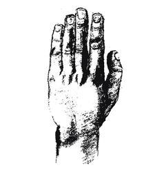 Hand sketch vector