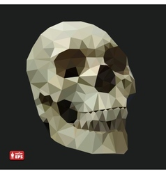Human Skull in a Triangular Style vector image