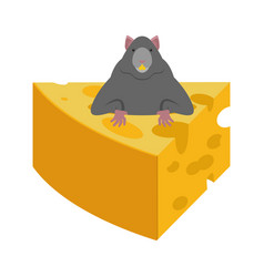mouse and cheese rodent vector image
