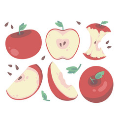 red apple mix vector image