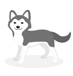 husky breed dog icon flat cartoon style cute vector image