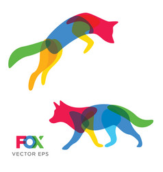 Creative fox wolf animal design vector