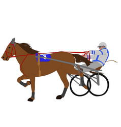 horse and jockey harness racing color vector image