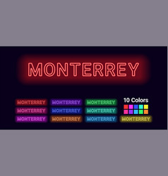 Neon name of monterrey city vector