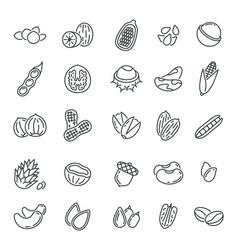 nuts and seeds peanuts icons quality agriculture vector image