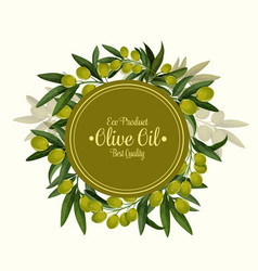 olives bunch poster for olive oil vector image