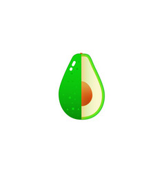 realistic avocados vector image vector image