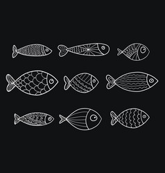 set of stylized fishes collection vector image