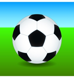 Soccer ball on field vector