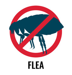 anti-flea emblem red and blue colours vector image