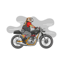 Dog is riding a classic motorcycle vector