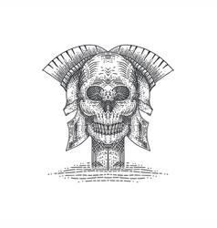 skull spartan vector image