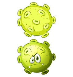 Close up bacteria front and back view vector image