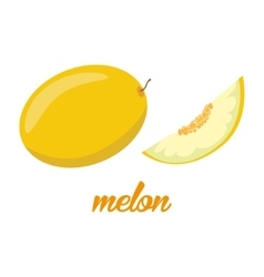 Melon fruits poster in cartoon style depicting vector image vector image