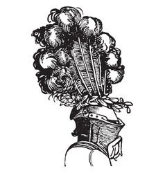 aigret worn on helmets vintage engraving vector image