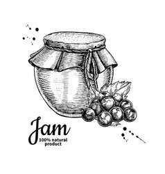 Black currant jam glass jar drawing fru vector
