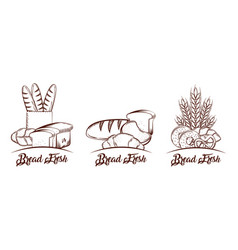 bread collection products food bakery sketch vector image