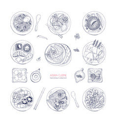 Collection of hand drawn dishes of asian cuisine vector