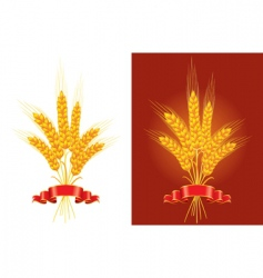 golden wheat vector image
