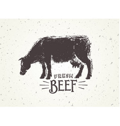 Graphic of the cow with inscriptions hand-drawn vector