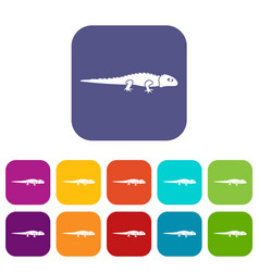 Iguana icons set vector