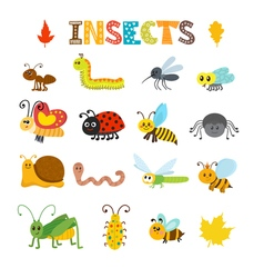 Set of cartoon insects colorful bugs collection vector