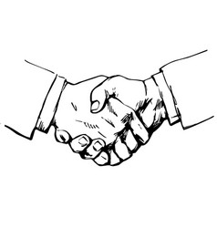sketch of handshake symbol of friendship vector image