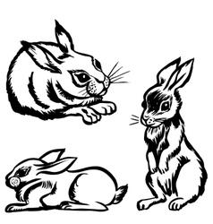 rabbits set vector image vector image