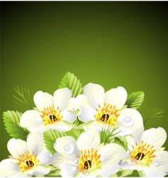 stylized floral design vector image