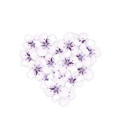 blooming bouquet sakura blue flowers in shape vector image