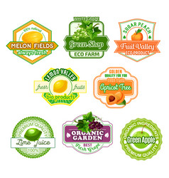 icons for fruit juice or farm market vector image