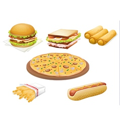 various foods vector image
