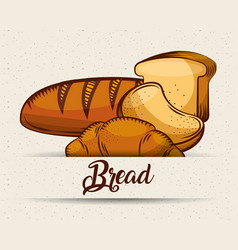 bread bakery products food template image vector image