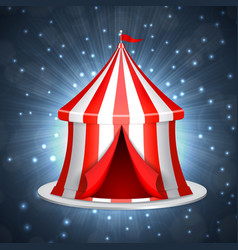 Circus ten on a blue background vector