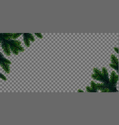 Green christmas tree branches vector