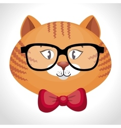 Hipster cat glasses and bow vector