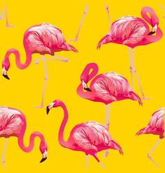tropical bird flamingo background seamless pattern vector image