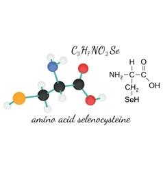 C3H7NO2Se selenocysteine amino acid molecule vector image vector image