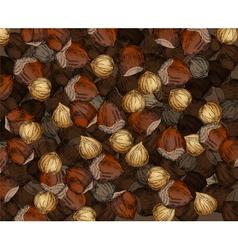 Hand Drawn Walnuts Texture Hazelnuts vector image