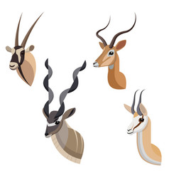 African antelope or gazelle portrait set made in vector