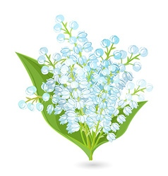 Lovely bouquet of small spring flowers lilies of vector